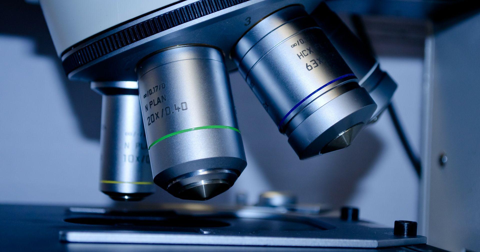 najnovejša odkritja pri celiakiji