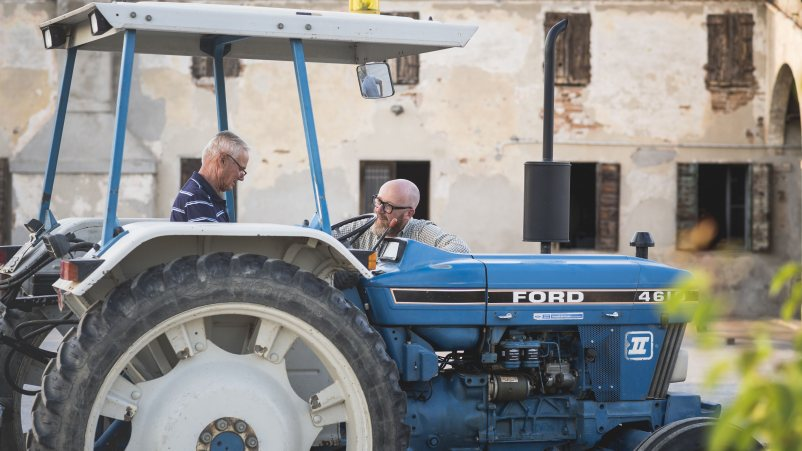 Kmetje žito brez glutena gojijo ob strogem nadzoru